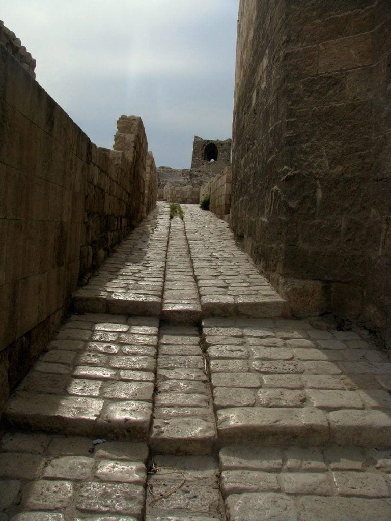 Homage to Syria: ALEPPO CITADEL (4)