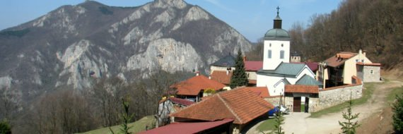 THINGS TO DO IN GUCA SERBIA