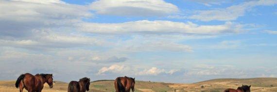 Sjenica i Pešter – Šta videti